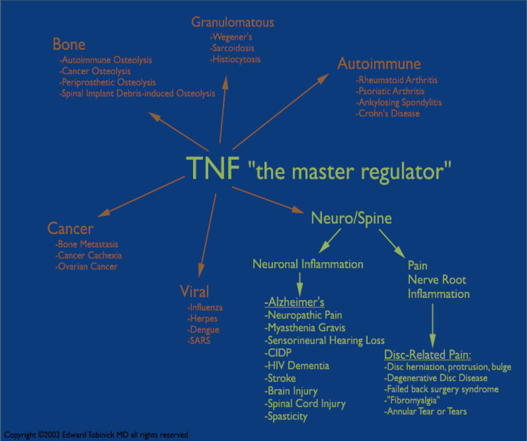 Tnf The Master Regulator Diagram By Edward Tobinick Md Back Disc